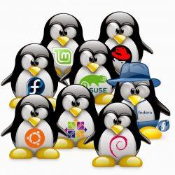 Características del Software Libre