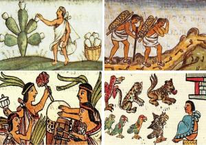 Características de los Mixtecos